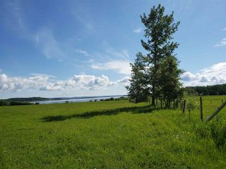 Photo 25: 10524 Twp Rd 541: Rural Yellowhead House for sale : MLS®# E4122877