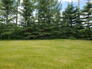Photo 24: 10524 Twp Rd 541: Rural Yellowhead House for sale : MLS®# E4122877