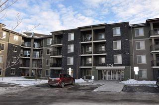 Main Photo: 310 274 MCCONACHIE Drive in Edmonton: Zone 03 Condo for sale : MLS®# E4134433
