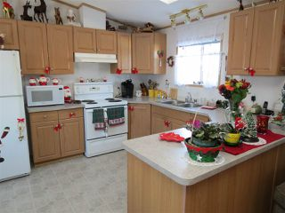 Photo 8: 14 10410 101A Street: Morinville Mobile for sale : MLS®# E4137824