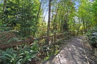 "Photo 20: 216 100 CAPILANO Road in Port Moody: Port Moody Centre Condo for sale in ""SUTER BROOK"" : MLS®# R2342911"