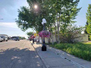 Photo 27: 18 Southbridge Drive: Calmar Vacant Lot for sale : MLS®# E4158319