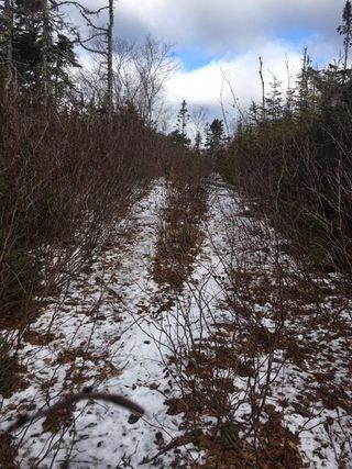Photo 2: Lot 26a 83 Bayview Crescent in Prospect: 40-Timberlea, Prospect, St. Margaret`S Bay Vacant Land for sale (Halifax-Dartmouth)  : MLS®# 202003044