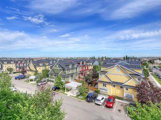 Photo 11: 3410 310 MCKENZIE TOWNE Gate SE in Calgary: McKenzie Towne Apartment for sale : MLS®# A1014746