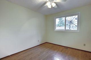Photo 14: 10856 173 Avenue in Edmonton: Zone 27 House Half Duplex for sale : MLS®# E4212352