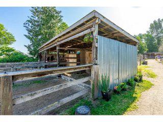 Photo 9: 6670 64 Street in Delta: East Delta House for sale (Ladner)  : MLS®# R2521013