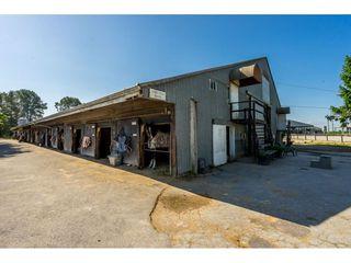 Photo 11: 6670 64 Street in Delta: East Delta House for sale (Ladner)  : MLS®# R2521013