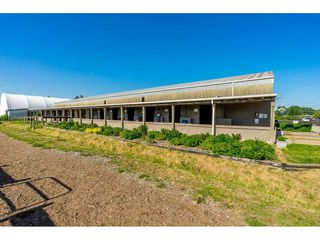 Photo 6: 6670 64 Street in Delta: East Delta House for sale (Ladner)  : MLS®# R2521013