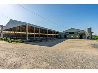 Photo 2: 6670 64 Street in Delta: East Delta House for sale (Ladner)  : MLS®# R2521013