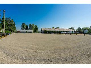Photo 5: 6670 64 Street in Delta: East Delta House for sale (Ladner)  : MLS®# R2521013