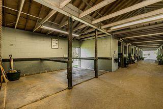 Photo 13: 6670 64 Street in Delta: East Delta House for sale (Ladner)  : MLS®# R2521013