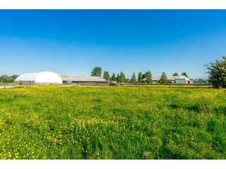 Main Photo: 6670 64 Street in Delta: East Delta House for sale (Ladner)  : MLS®# R2521013