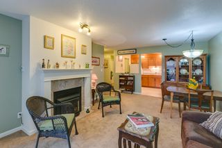 Photo 4: 2 Bedroom Apartment for Sale in Maple Ridge