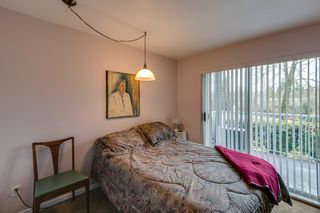 Photo 17: 2 Bedroom Apartment for Sale in Maple Ridge