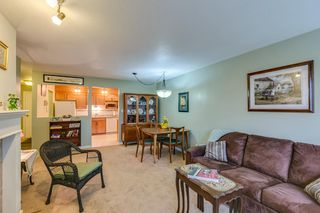 Photo 5: 2 Bedroom Apartment for Sale in Maple Ridge