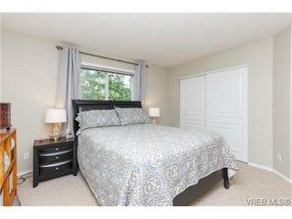 Photo 10: 204 971 McKenzie Ave in VICTORIA: SE Quadra Condo for sale (Saanich East)  : MLS®# 707820