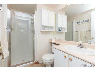 Photo 12: 204 971 McKenzie Ave in VICTORIA: SE Quadra Condo for sale (Saanich East)  : MLS®# 707820