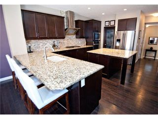 Photo 6: 40 CHAPARRAL VALLEY Green SE in Calgary: Chaparral Valley House for sale : MLS®# C4025542