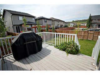 Photo 32: 40 CHAPARRAL VALLEY Green SE in Calgary: Chaparral Valley House for sale : MLS®# C4025542