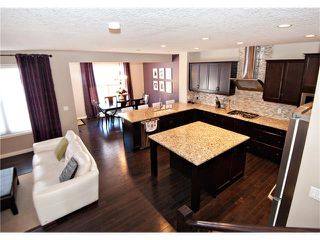 Photo 7: 40 CHAPARRAL VALLEY Green SE in Calgary: Chaparral Valley House for sale : MLS®# C4025542