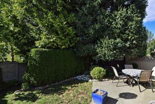 """Photo 19: 151 9012 WALNUT GROVE Drive in Langley: Walnut Grove Townhouse for sale in """"Queen Anne"""" : MLS®# R2110332"""