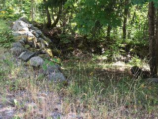 """Photo 3: LOT 115 LILLOOET LAKE Estates in Pemberton: Lillooet Lake Land for sale in """"LILLOOET LAKE ESTATES"""" : MLS®# R2187599"""