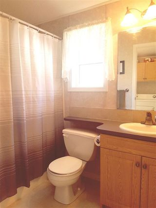 Photo 14: 19 9960 WILSON STREET in Mission: Stave Falls Manufactured Home for sale : MLS®# R2213959