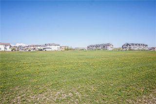 Photo 40: 247 SILVERADO Drive SW in Calgary: Silverado House for sale : MLS®# C4177522