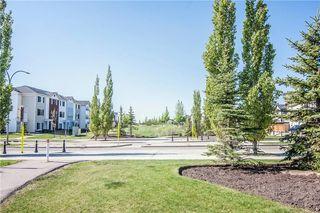 Photo 41: 247 SILVERADO Drive SW in Calgary: Silverado House for sale : MLS®# C4177522