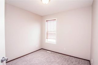 Photo 24: 247 SILVERADO Drive SW in Calgary: Silverado House for sale : MLS®# C4177522