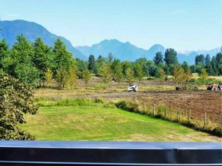 Photo 20: 19485 RICHARDSON Road in Pitt Meadows: North Meadows PI House for sale : MLS®# R2313725