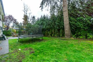 """Photo 19: 8988 ROYAL Street in Langley: Fort Langley House for sale in """"Fort Langley"""" : MLS®# R2317989"""