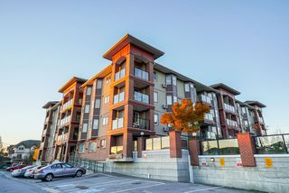 "Main Photo: 402 19730 56 Avenue in Langley: Langley City Condo for sale in ""Madison Place"" : MLS®# R2323371"