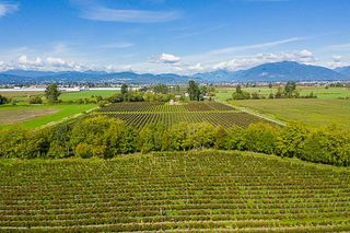 Photo 11: 34486 CLAYBURN Road in Abbotsford: Matsqui House for sale : MLS®# R2344497