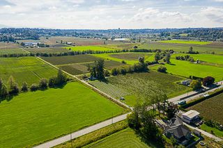 Photo 4: 34486 CLAYBURN Road in Abbotsford: Matsqui House for sale : MLS®# R2344497