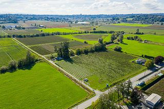 Photo 5: 34486 CLAYBURN Road in Abbotsford: Matsqui House for sale : MLS®# R2344497