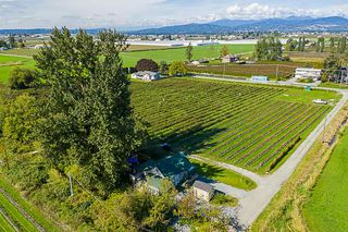 Photo 6: 34486 CLAYBURN Road in Abbotsford: Matsqui House for sale : MLS®# R2344497