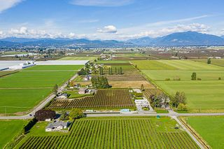 Photo 14: 34486 CLAYBURN Road in Abbotsford: Matsqui House for sale : MLS®# R2344497