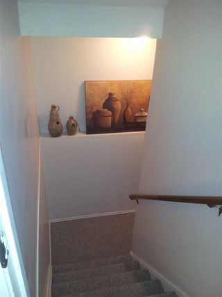 Photo 14: 41 4403 RIVERBEND Road in Edmonton: Zone 14 Townhouse for sale : MLS®# E4149721