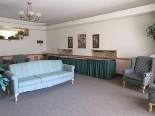 Photo 26: 250 13441 127 Street in Edmonton: Zone 01 Condo for sale : MLS®# E4154316