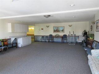Photo 24: 250 13441 127 Street in Edmonton: Zone 01 Condo for sale : MLS®# E4154316