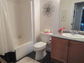 Photo 19: 250 13441 127 Street in Edmonton: Zone 01 Condo for sale : MLS®# E4154316