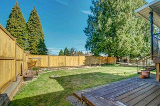 Photo 19: 21825 124 Avenue in Maple Ridge: West Central House for sale : MLS®# R2368355