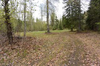 """Photo 39: 5170 DRIFTWOOD Road in Smithers: Smithers - Rural House for sale in """"DRIFTWOOD"""" (Smithers And Area (Zone 54))  : MLS®# R2371136"""