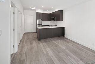 Photo 5: 205 991 McKenzie Avenue in VICTORIA: SE Quadra Condo Apartment for sale (Saanich East)  : MLS®# 415454