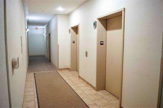 Photo 28: 425 7511 171 Street in Edmonton: Zone 20 Condo for sale : MLS®# E4195632