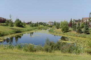 Photo 45: 4923 TERWILLEGAR Common in Edmonton: Zone 14 Attached Home for sale : MLS®# E4196133