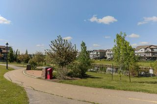 Photo 42: 4923 TERWILLEGAR Common in Edmonton: Zone 14 Attached Home for sale : MLS®# E4196133