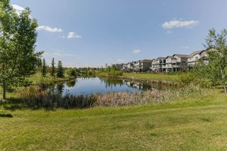 Photo 43: 4923 TERWILLEGAR Common in Edmonton: Zone 14 Attached Home for sale : MLS®# E4196133