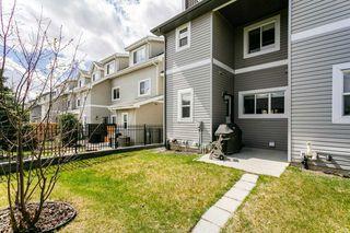 Photo 41: 4923 TERWILLEGAR Common in Edmonton: Zone 14 Attached Home for sale : MLS®# E4196133